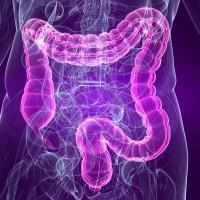 L'ostéopathie et le colon irritable