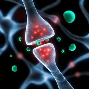 Les douleurs neurogènes