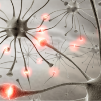 L'ostéopathie et les différents syndromes canalaires