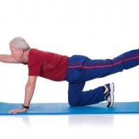 Démystifier les muscles stabilisateurs du bassin et de la colonne vertébrale