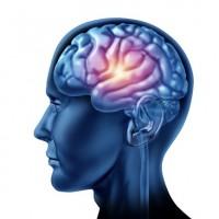 La commotion cérébrale : comment l'ostéopathie peut vous aider?