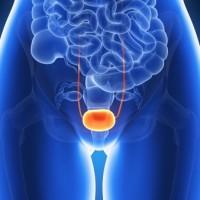 L'ostéopathie et la vessie hyperactive